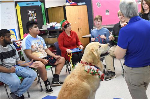 Therapy dogs visit OHS